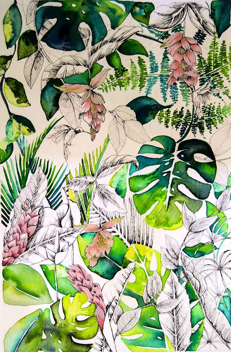libriduunjardintropicaldcabecera