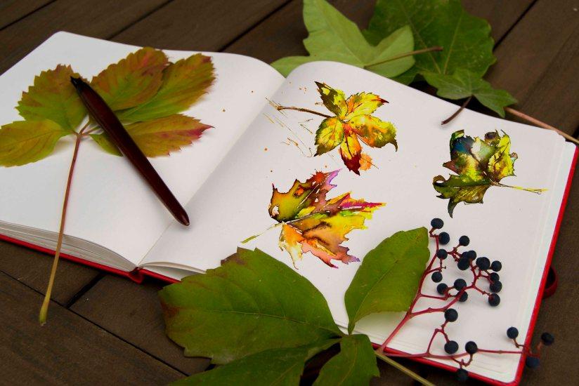 libriduhojas2