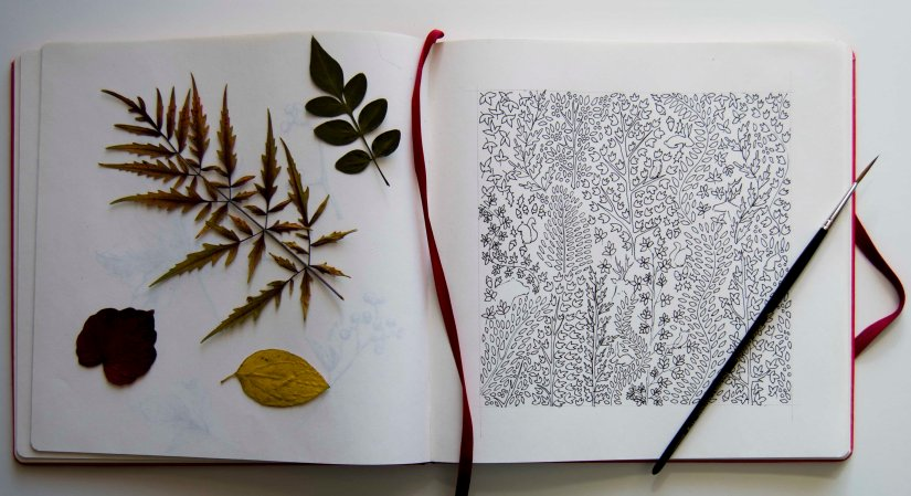 libridujardinboceto